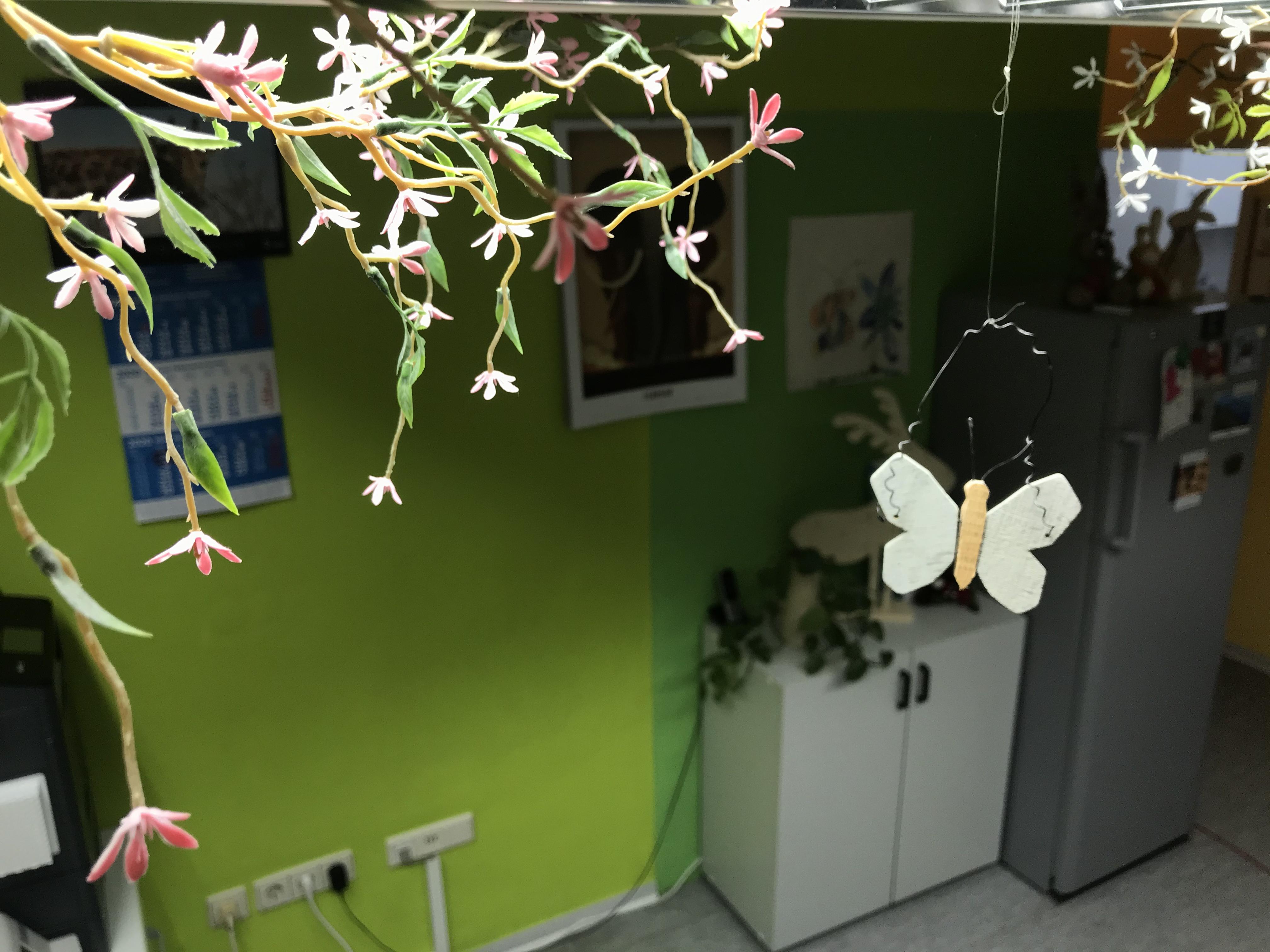 Dekoration in der Praxis für Kinder- und Jugendmedizin in Königs Wusterhausen